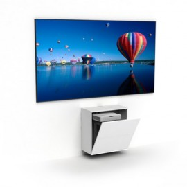 "100"" dnp LaserPanel with Short Throw Projector"